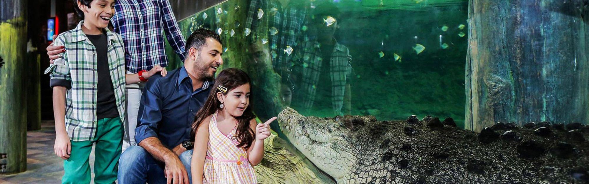 Dubai Dubai Aquarium und Underwater Zoo