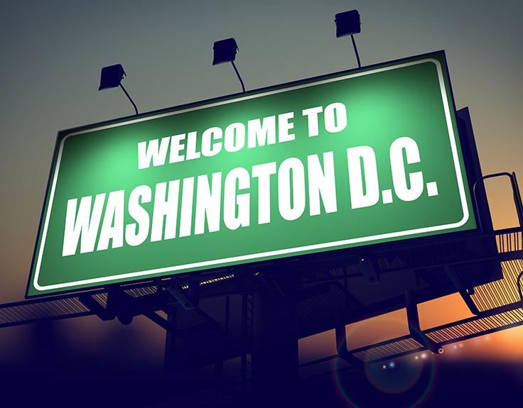 Summer in Washington DC
