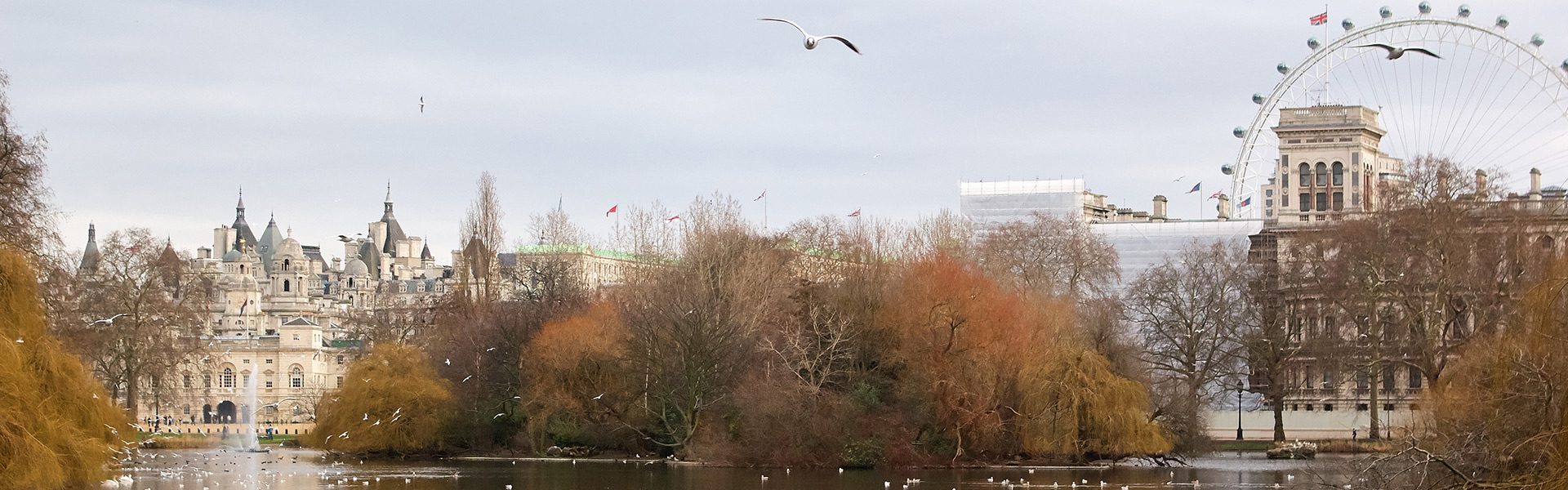 El río Támesis y el London Eye con un fondo de árboles otoñales