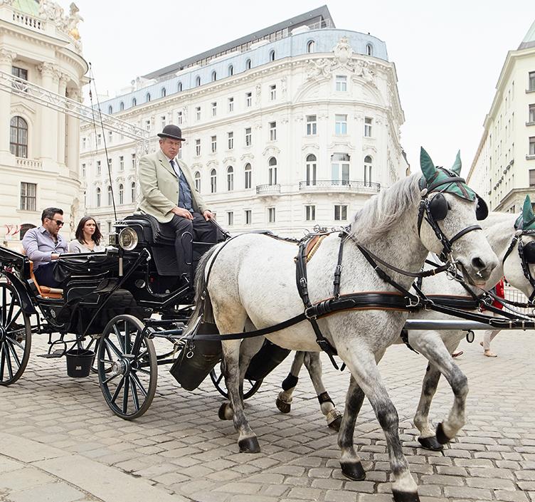 Kutschenfahrt in Wien