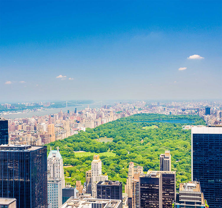 Ariel view of Central Park and New York City