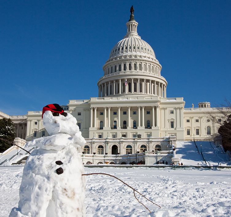 Snowman in front of the United States Capitol building