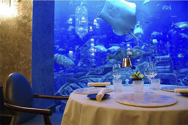 Dine Underwater