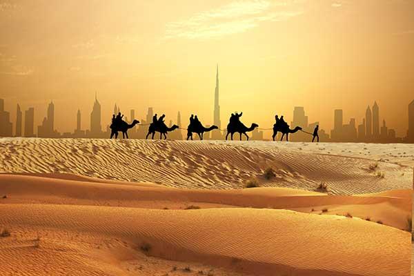 Ausflug in die Wüste