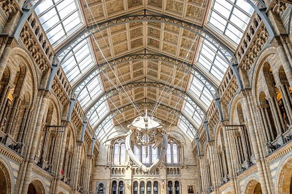 Museos mundialmente famosos