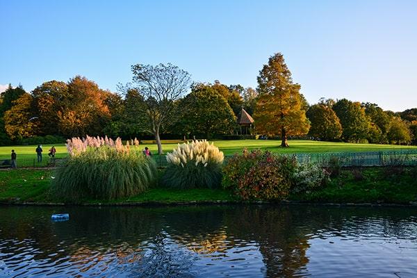 Les étangs de Hampstead Heath