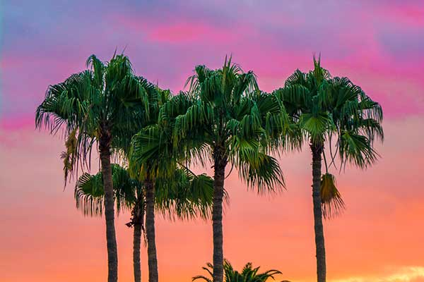 Miami-La ciudad mágica