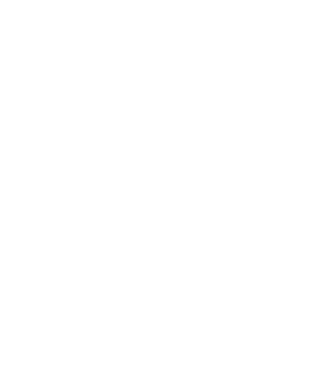 Big Bus Dublin Logo