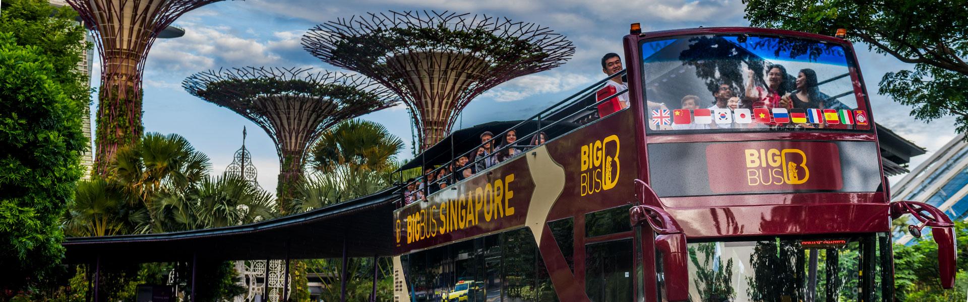 Big Bus Tours Singapore passing Super Trees