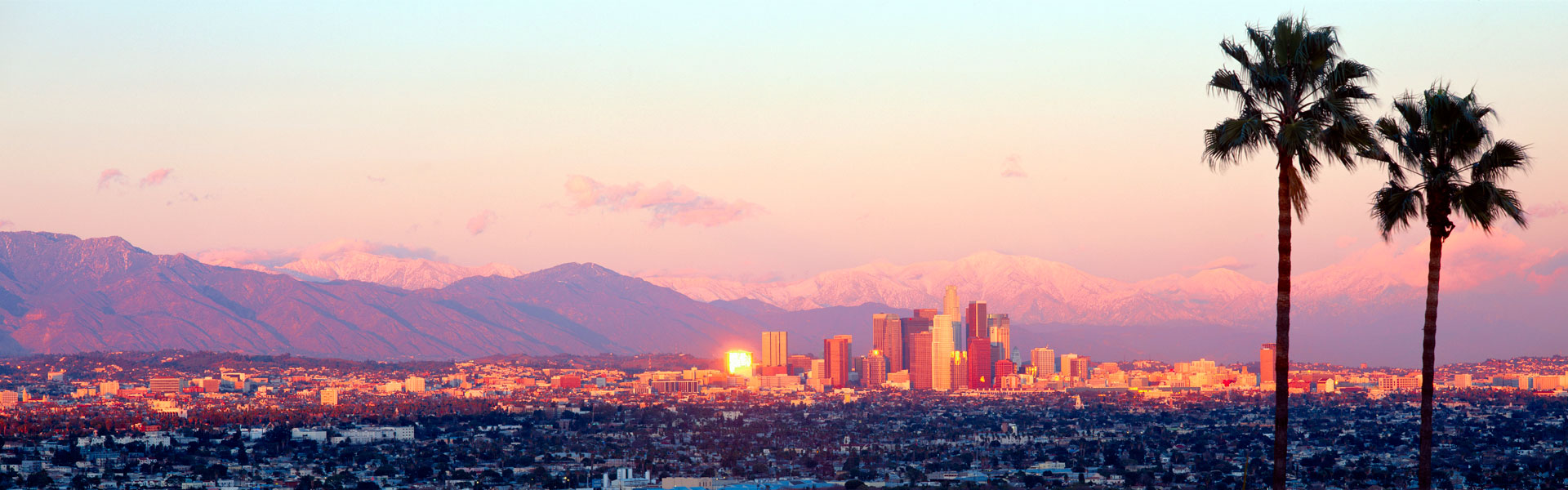 View of Downtown Los Angeles with palm trees