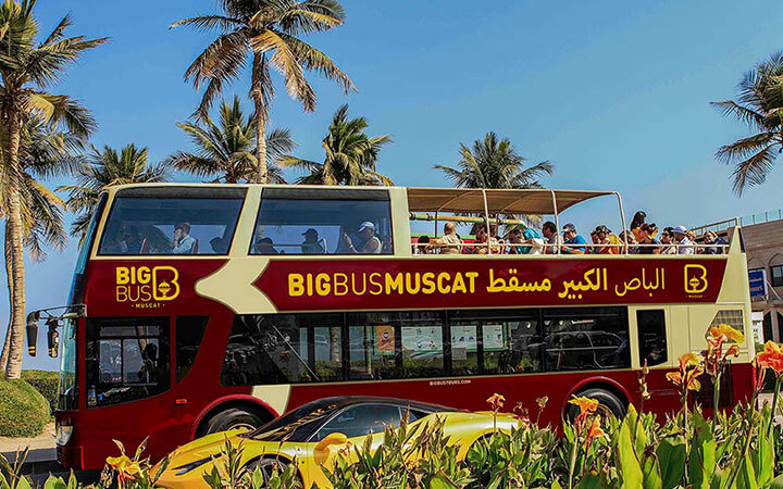 Bis Bus under palm trees