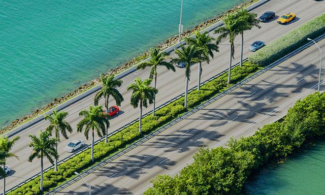 Miami Skyline Daytime