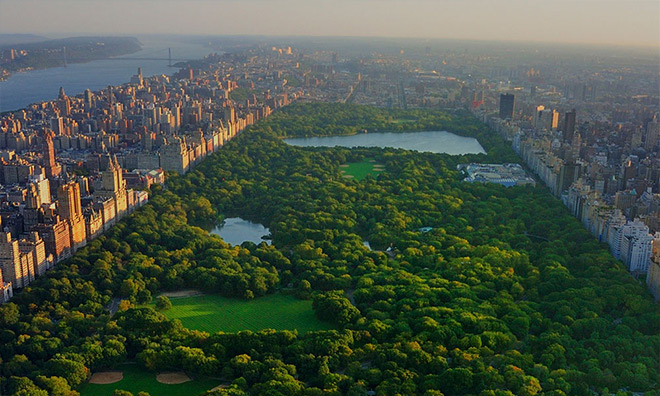 Ariel view of Central Park in New York